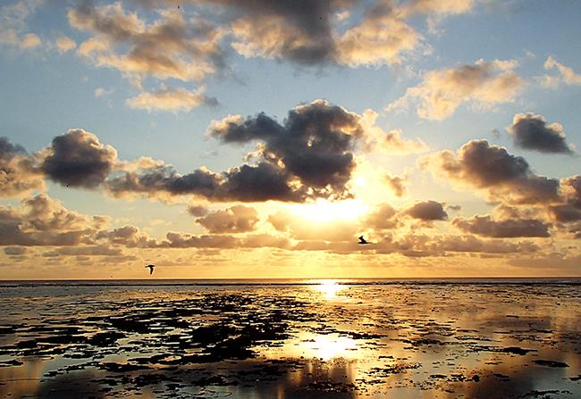 lei_sunrise